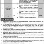 Deputy Commissioner Office NTS Jobs 2020 Application form