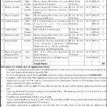 Divisional Public School & College Jahanian District Khanewal NTS jobs 2020 Roll No Slip