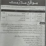 Ministry of Commerce & Textile NTS Jobs 2020 Application Form