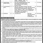 Lahore Electric Supply Company LESCO NTS Jobs 2020 Application Form