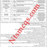 Water and Power Development Authority Teacher Jobs 2020 PTS Application Form