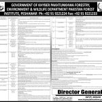 KPK Forestry Environment & Wildlife Department ETEA Jobs 2020 Apply Online